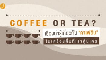Coffee or Tea? : เรื่องน่ารู้เกี่ยวกับ