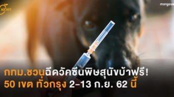 กทม.จัดบริการวัคซีนพิษสุนัขบ้าฟรี! 50 เขต ทั่วกรุง 2-13 ก.ย. 62 นี้