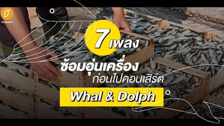 7 เพลงซ้อมอุ่นเครื่องก่อนไปคอนเสิร์ต Whal & Dolph