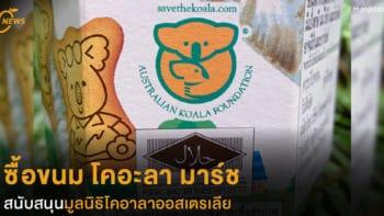 ซื้อขนม โคอะลา มาร์ช สนับสนุนมูลนิธิโคอาลาออสเตรเลีย