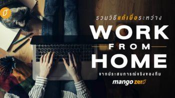 รวมวิธีแก้เบื่อระหว่าง Work From Home จากประสบการณ์จริงของทีม MangoZero