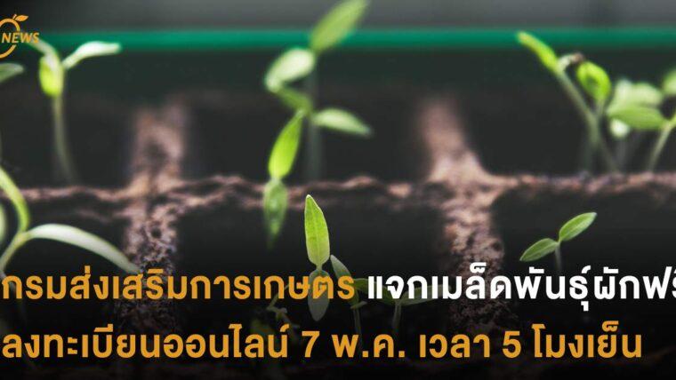 กรมส่งเสริมการเกษตรแจกเมล็ดพันธุ์ผักฟรี ลงทะเบียนออนไลน์ 7 พ.ค. เวลา 5 โมงเย็น มีจำนวนจำกัด
