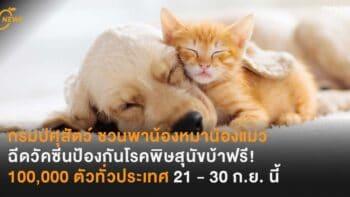 กรมปศุสัตว์ ชวนพาน้องหมาน้องแมว ฉีดวัคซีนป้องกันโรคพิษสุนัขบ้าฟรี! 100,000 ตัวทั่วประเทศ 21 - 30 ก.ย. นี้