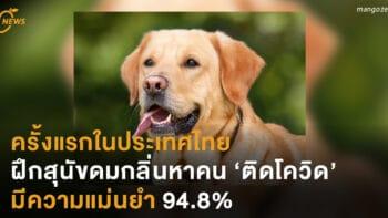 ครั้งแรกในประเทศไทย ฝึกสุนัขดมกลิ่นหาคน 'ติดโควิด' มีความแม่นยำ 94.8%