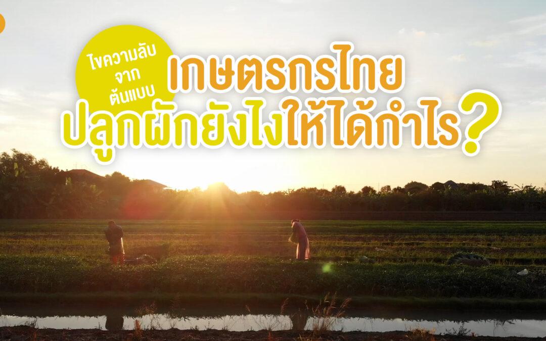 ไขความลับจากต้นแบบ เกษตรกรไทยปลูกผักยังไงให้ได้กำไร