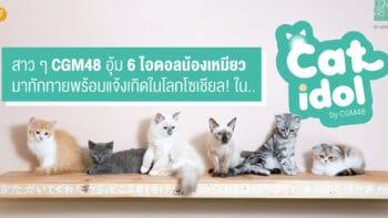 สาว ๆ CGM48 อุ้ม 6 ไอดอลน้องเหมียว มาทักทายพร้อมแจ้งเกิดในโลกโซเชียล!